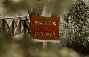 esküvői-dekoráció-lantai-birtok-3-5